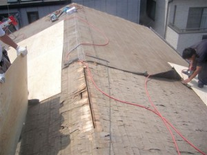 roof_04