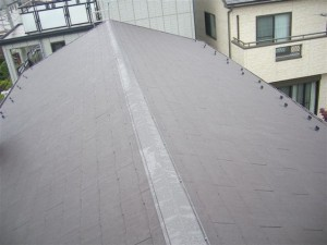roof_09